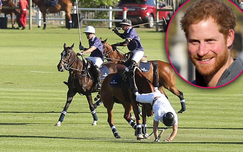 prince harry royal fall polo horse