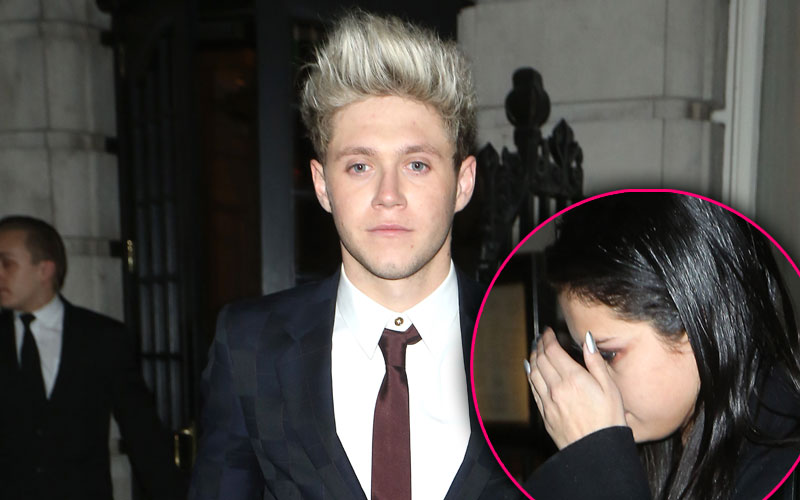 selena gomez niall horan one direction party
