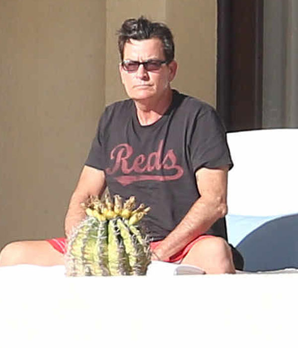Charlie Sheen Escapes To Mexico Amid Ex Denise Richards