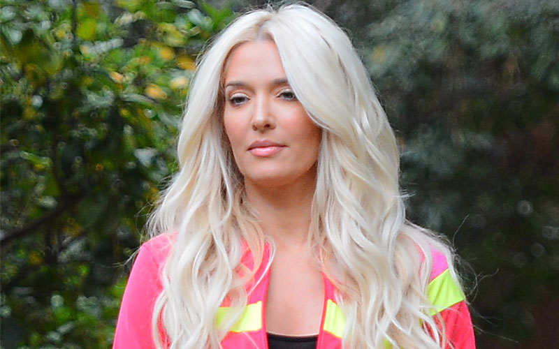 erika jayne girardi rhobh walks dog