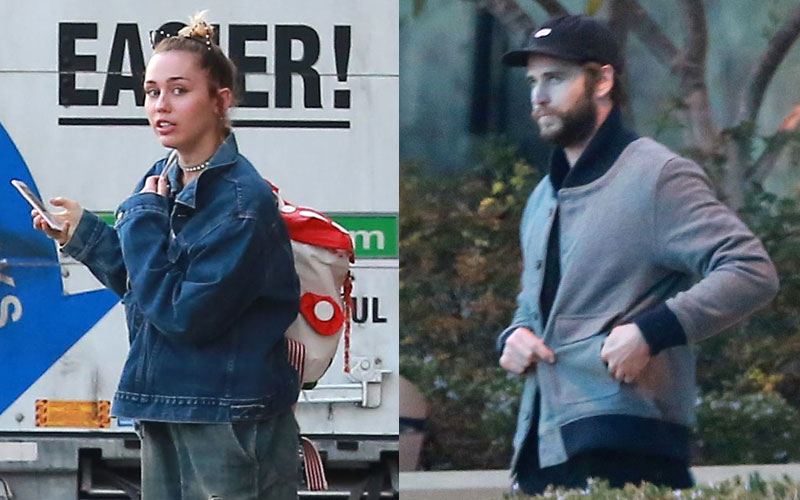 Miley Cyrus Liam Hemsworth Back Together Moving In