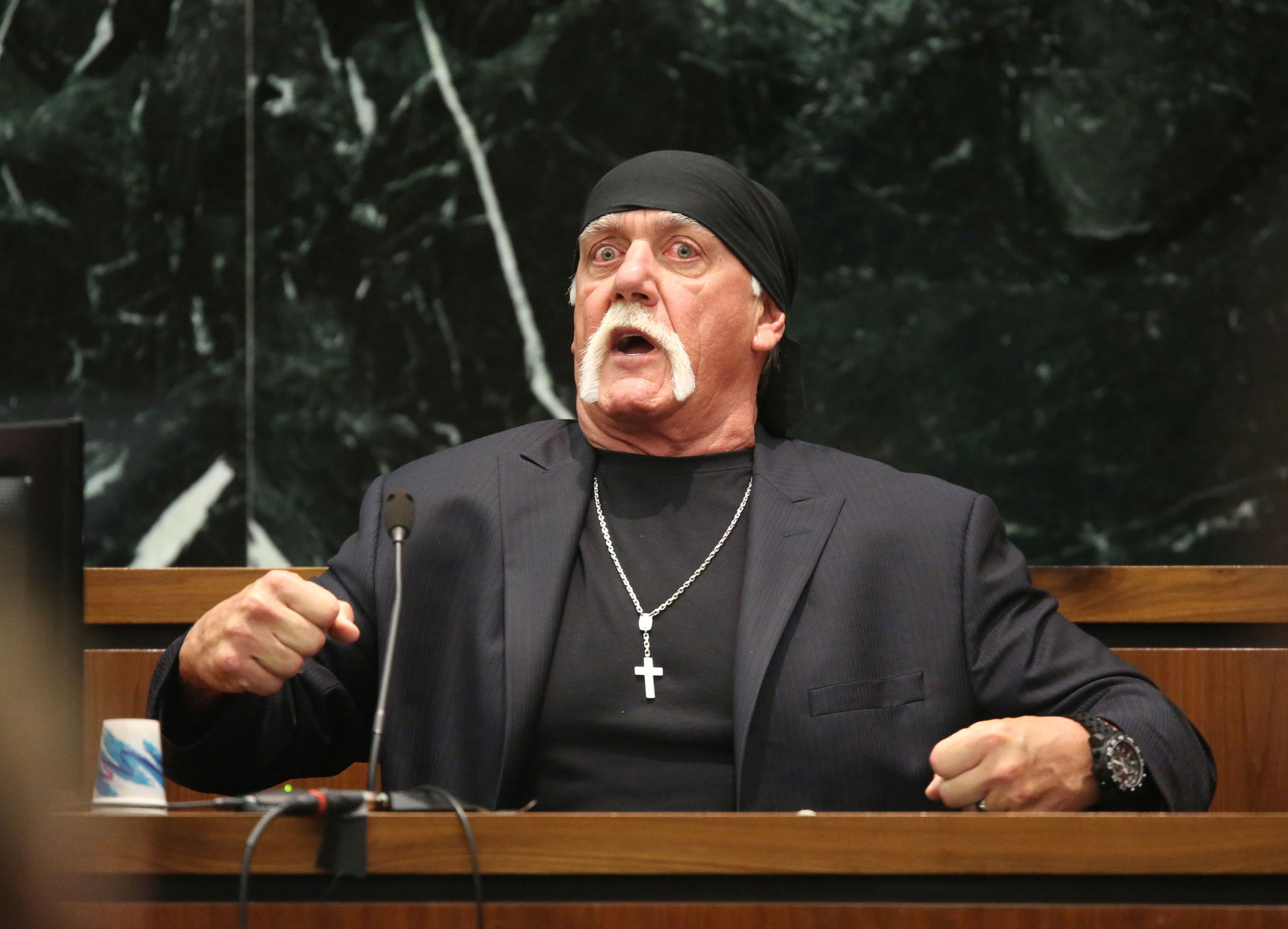 hulk hogan sex tape lawsuit 115 million settlement