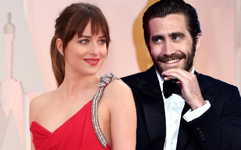 jake gyllenhaal wants dakota johnson back
