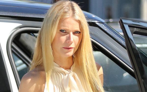 Gwyneth Paltrow Backstabber Feuds Mean Hated Pics 3